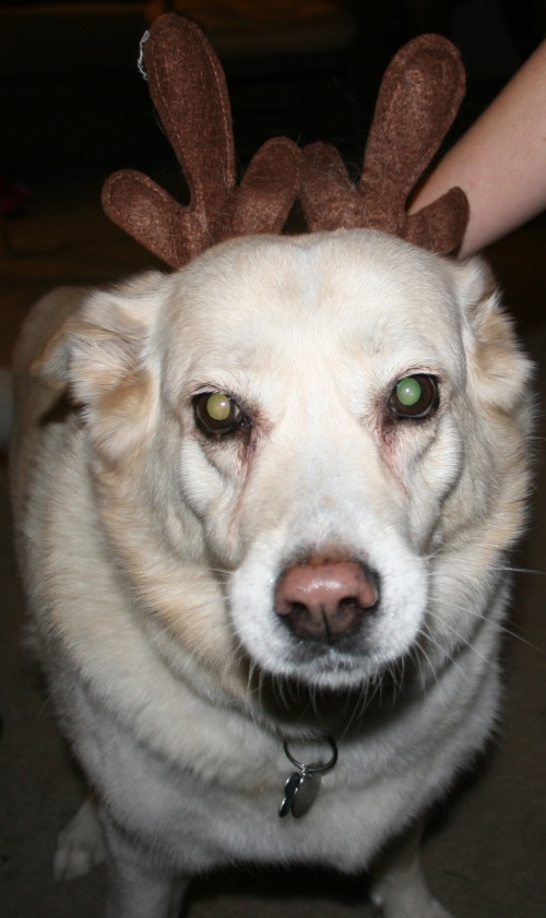 Rudolph Jessie (cropped)