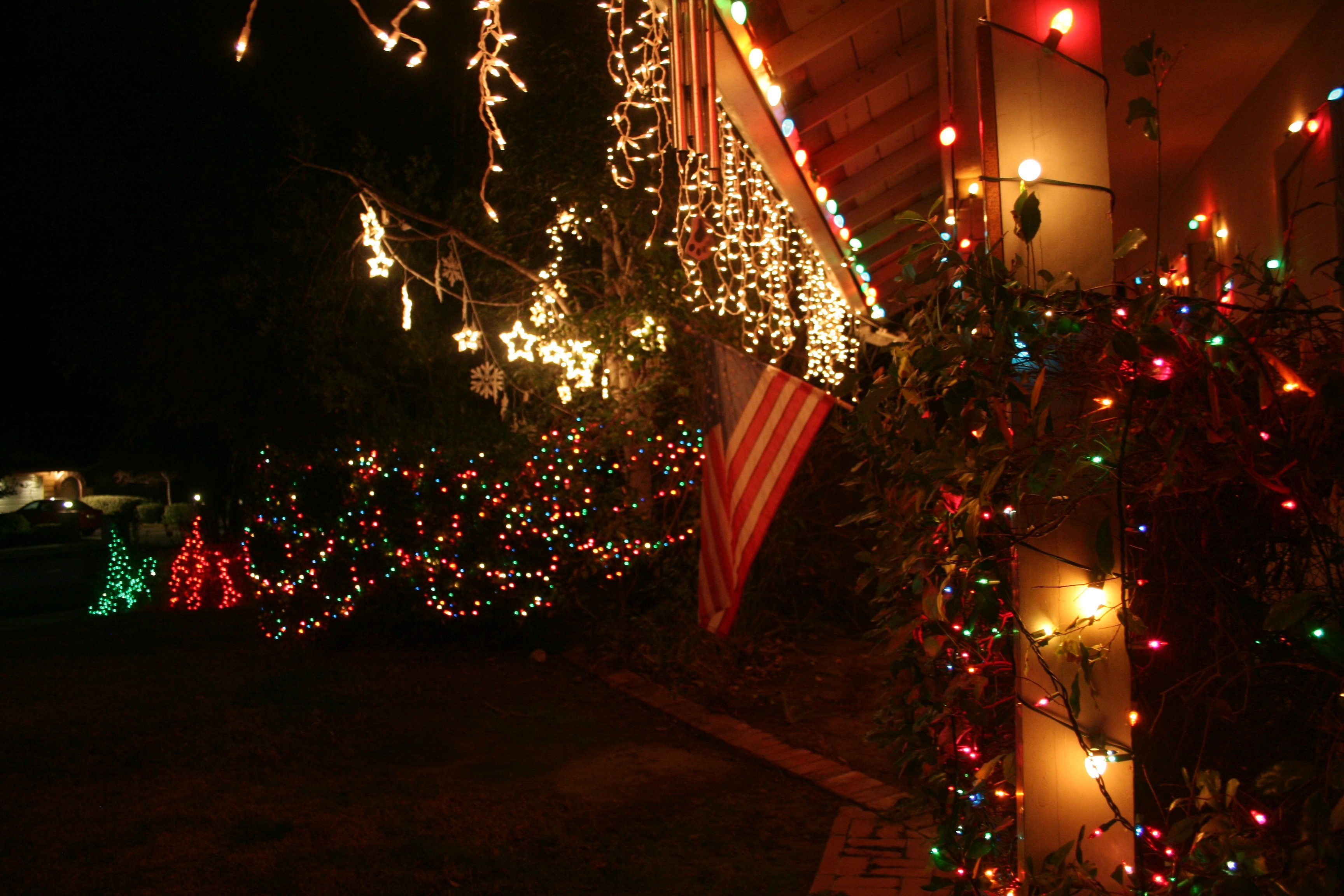 for example the birch tree with the two strings of white stars in them would normally have those plus at least two or three strings of plain white lights